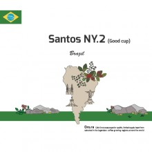 [Brazil]Santos NY.2(Good Cup)