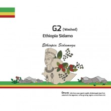 G2 Washed (Ethiopia Sidamo)