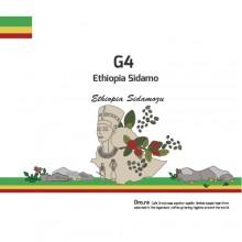 G4 (Ethiopia Sidamo)