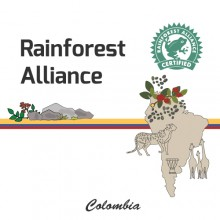 [Colombia] Rainforest Alliance