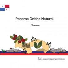 Panama Geisha Naural
