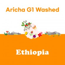 [에티오피아] Aricha G1 Washed