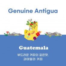 [과테말라] Genuine Antigua